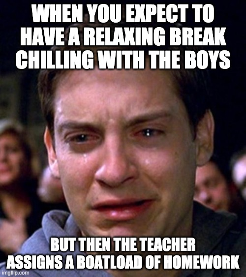 didnt happen to me... yet |  WHEN YOU EXPECT TO HAVE A RELAXING BREAK CHILLING WITH THE BOYS; BUT THEN THE TEACHER ASSIGNS A BOATLOAD OF HOMEWORK | image tagged in crying peter parker | made w/ Imgflip meme maker