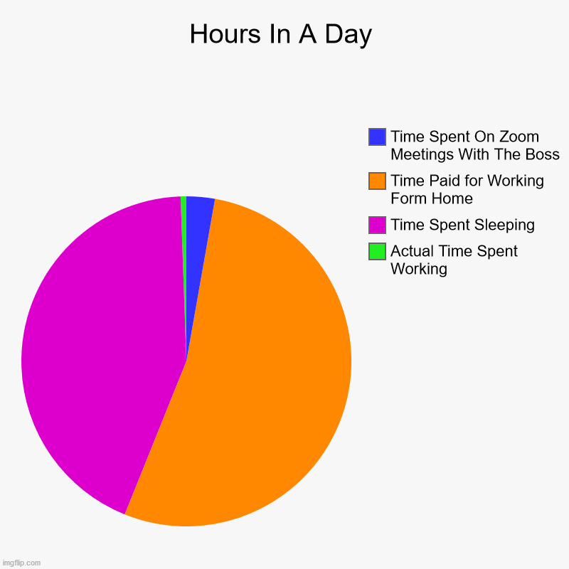 Covid Time Charts | Hours In A Day | Actual Time Spent Working, Time Spent Sleeping, Time Paid for Working Form Home, Time Spent On Zoom Meetings With The Boss | image tagged in charts,pie charts,covid-19,zoom,wasting time | made w/ Imgflip chart maker