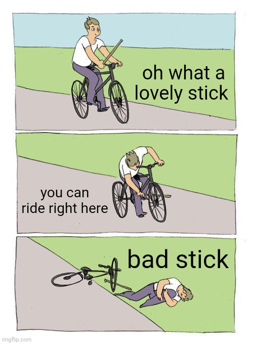 bad stick |  oh what a lovely stick; you can ride right here; bad stick | image tagged in memes,bike fall | made w/ Imgflip meme maker
