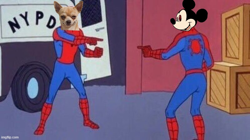Are you me? | image tagged in spiderman pointing at spiderman,chihuahua,topolino | made w/ Imgflip meme maker