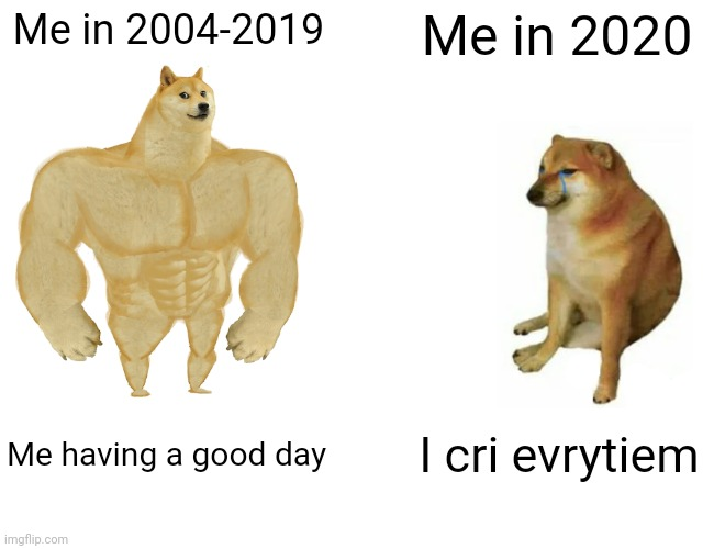 True |  Me in 2004-2019; Me in 2020; Me having a good day; I cri evrytiem | image tagged in memes,buff doge vs cheems,2020,2020 sucks,coronavirus,covid-19 | made w/ Imgflip meme maker