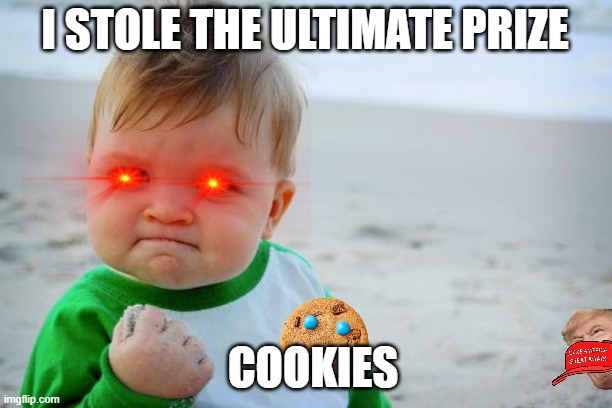 COOKIE |  I STOLE THE ULTIMATE PRIZE; COOKIES | image tagged in memes,success kid original,cookies,donald trump | made w/ Imgflip meme maker