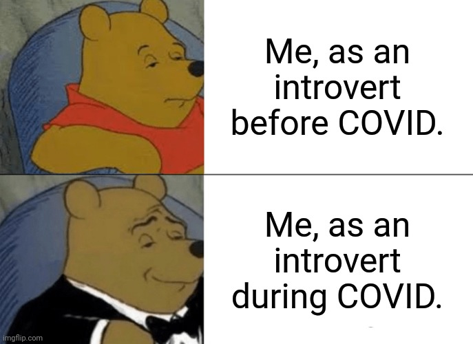 Introvert Vibes |  Me, as an introvert before COVID. Me, as an introvert during COVID. | image tagged in memes,tuxedo winnie the pooh,covid-19,introverts,introvert | made w/ Imgflip meme maker