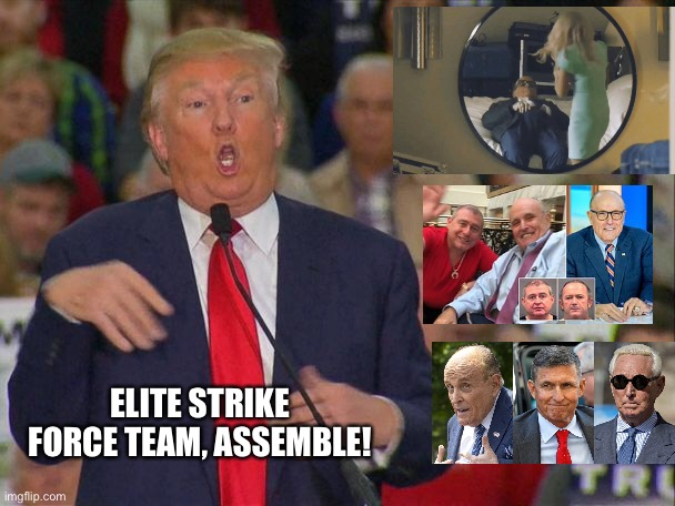 Strike Force Team assemble! |  ELITE STRIKE FORCE TEAM, ASSEMBLE! | image tagged in trump,rally,strikeforceteam | made w/ Imgflip meme maker
