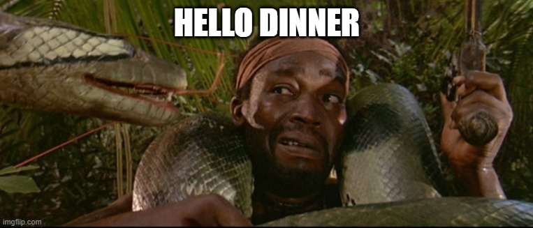 Pirates - Snake |  HELLO DINNER | image tagged in snakes | made w/ Imgflip meme maker
