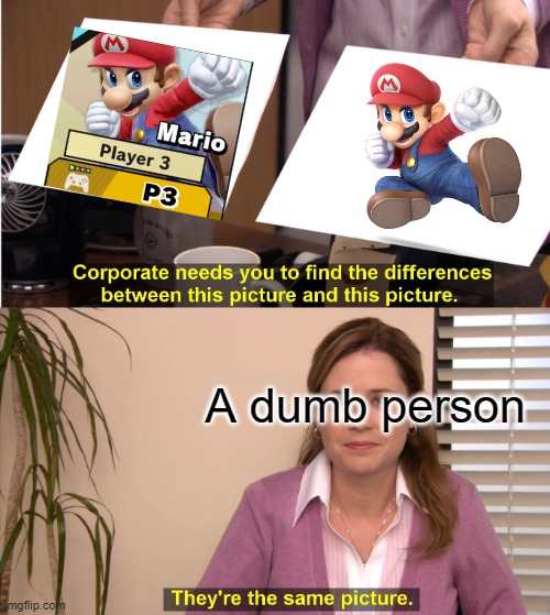 A dumb person | image tagged in memes,they're the same picture | made w/ Imgflip meme maker