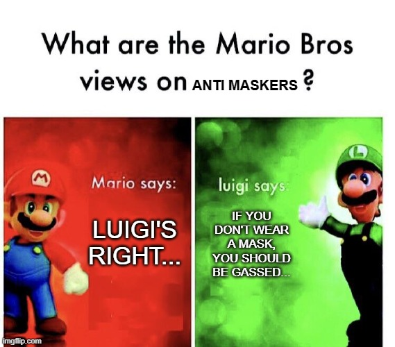 Do it for the people... |  ANTI MASKERS; IF YOU DON'T WEAR A MASK, YOU SHOULD BE GASSED... LUIGI'S RIGHT... | image tagged in mario v luigi | made w/ Imgflip meme maker
