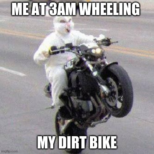 funny bunny |  ME AT 3AM WHEELING; MY DIRT BIKE | image tagged in funny bunny motorcycle wheelie | made w/ Imgflip meme maker