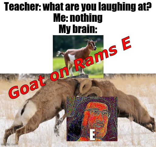 Gordon Ramsay |  Teacher: what are you laughing at? Me: nothing My brain:; Goat on Rams E | image tagged in gordon ramsay,memes,funny,goat,rams,e | made w/ Imgflip meme maker
