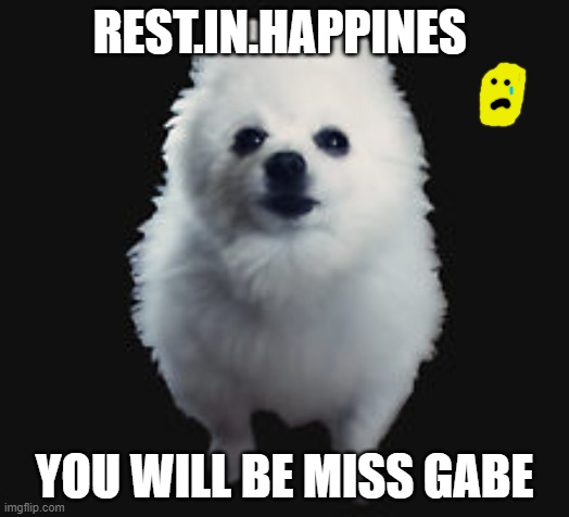 WE LOVE YOU GABE! T-T |  REST.IN.HAPPINES; YOU WILL BE MISS GABE | image tagged in gabe the dog | made w/ Imgflip meme maker