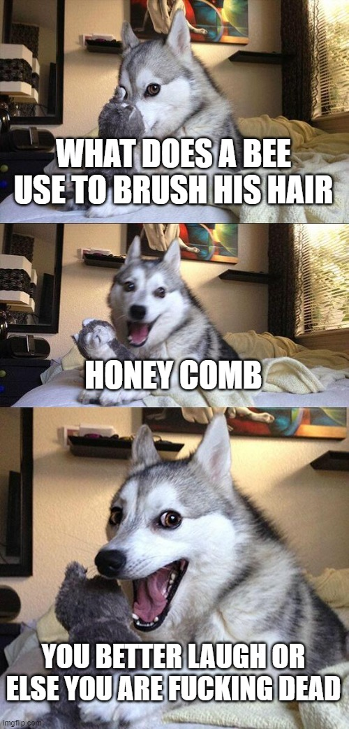 Bad Pun Dog Meme |  WHAT DOES A BEE USE TO BRUSH HIS HAIR; HONEY COMB; YOU BETTER LAUGH OR ELSE YOU ARE FUCKING DEAD | image tagged in memes,bad pun dog | made w/ Imgflip meme maker