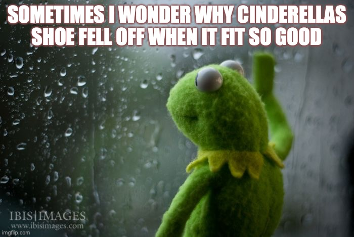 kermit window |  SOMETIMES I WONDER WHY CINDERELLAS SHOE FELL OFF WHEN IT FIT SO GOOD | image tagged in kermit window | made w/ Imgflip meme maker