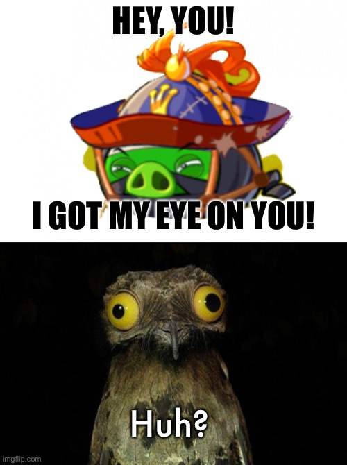 I got my eye on u |  HEY, YOU! I GOT MY EYE ON YOU! Huh? | image tagged in i got my eye on u,memes,owl | made w/ Imgflip meme maker