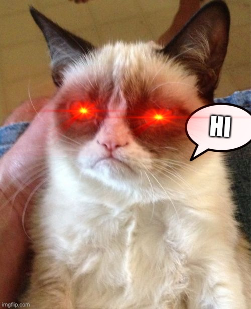 Grumpy Cat |  HI | image tagged in memes,grumpy cat | made w/ Imgflip meme maker