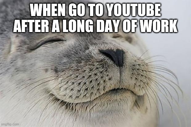 Satisfied Seal |  WHEN GO TO YOUTUBE AFTER A LONG DAY OF WORK | image tagged in memes,satisfied seal | made w/ Imgflip meme maker