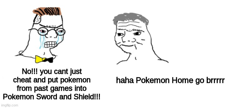 lol |  No!!! you cant just cheat and put pokemon from past games into Pokemon Sword and Shield!!! haha Pokemon Home go brrrrr | image tagged in nooo haha go brrr,pokemon,pokemon sword and shield,pokemon home | made w/ Imgflip meme maker