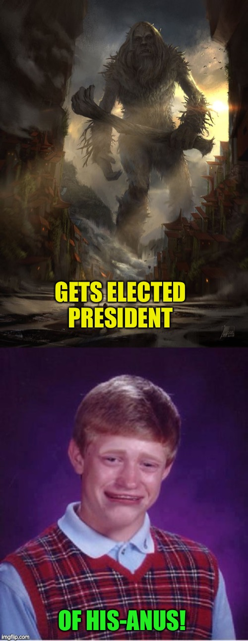 GETS ELECTED PRESIDENT OF HIS-ANUS! | image tagged in giant thing vs small thing,sad brian | made w/ Imgflip meme maker