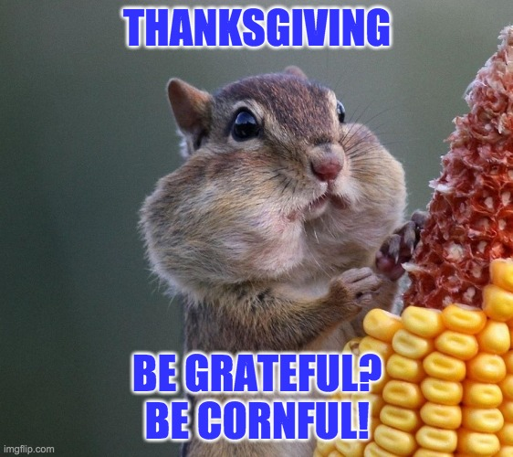 Happy Thanksgiving |  THANKSGIVING; BE GRATEFUL? BE CORNFUL! | image tagged in thanksgiving squirrel,squirrel,thanksgiving,holidays | made w/ Imgflip meme maker