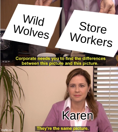 They're The Same Picture Meme |  Wild Wolves; Store Workers; Karen | image tagged in memes,they're the same picture | made w/ Imgflip meme maker