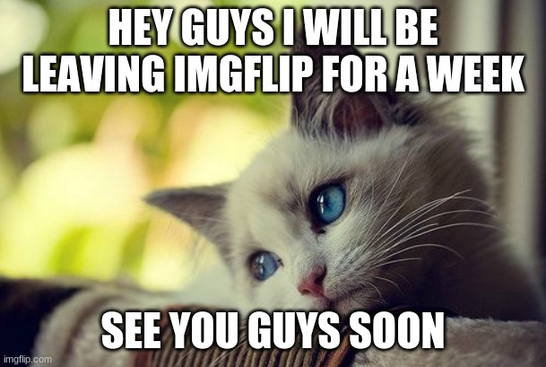 bye |  HEY GUYS I WILL BE LEAVING IMGFLIP FOR A WEEK; SEE YOU GUYS SOON | image tagged in memes,first world problems cat | made w/ Imgflip meme maker