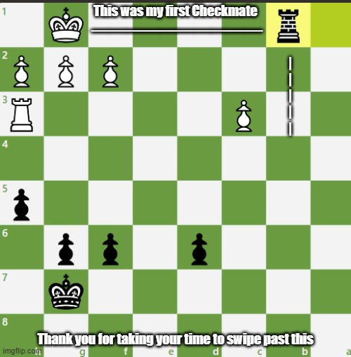 My First chess Win! |  __________; This was my first Checkmate; | | | | |; Thank you for taking your time to swipe past this | image tagged in chess,gaming,thank you | made w/ Imgflip meme maker