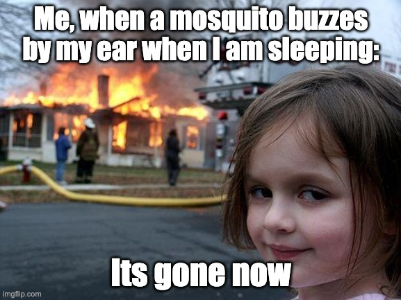 It's true tho |  Me, when a mosquito buzzes by my ear when I am sleeping:; Its gone now | image tagged in memes,disaster girl | made w/ Imgflip meme maker