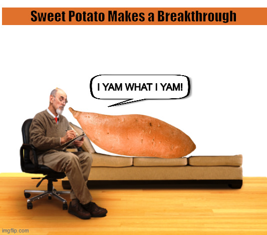 Sweet Potato Makes a Breakthrough | image tagged in sweet potato,yam,psychiatrist,funny,memes,i yam what i yam | made w/ Imgflip meme maker