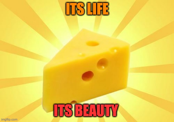Cheese Time |  ITS LIFE; ITS BEAUTY | image tagged in cheese time | made w/ Imgflip meme maker