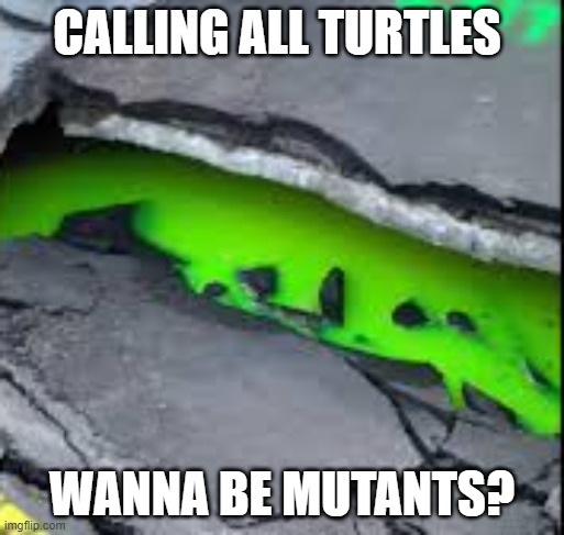 oooooooze |  CALLING ALL TURTLES; WANNA BE MUTANTS? | image tagged in toronto,teenage mutant ninja turtles,green ooze | made w/ Imgflip meme maker