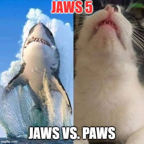 Jaws vs. Paws |  JAWS 5; JAWS VS. PAWS | image tagged in funny,cats,jaws,animals,shark,cat | made w/ Imgflip meme maker