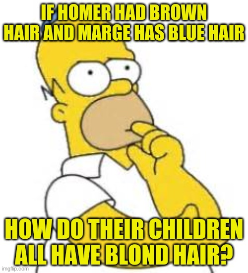 Where does the blond come from? |  IF HOMER HAD BROWN HAIR AND MARGE HAS BLUE HAIR; HOW DO THEIR CHILDREN ALL HAVE BLOND HAIR? | image tagged in homer simpson hmmmm,memes,simpsons,the simpsons,what,what the heck | made w/ Imgflip meme maker