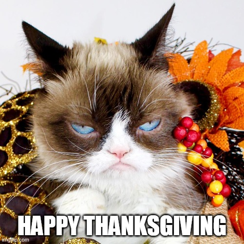 THANKSGIVING |  HAPPY THANKSGIVING | image tagged in grumpy cat | made w/ Imgflip meme maker