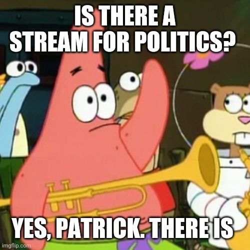 IS THERE A STREAM FOR POLITICS? YES, PATRICK. THERE IS | image tagged in memes,no patrick | made w/ Imgflip meme maker