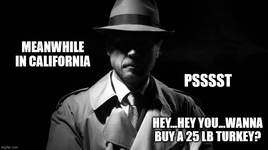 Small Gatherings |  MEANWHILE IN CALIFORNIA; PSSSST; HEY...HEY YOU...WANNA BUY A 25 LB TURKEY? | image tagged in covid-19 | made w/ Imgflip meme maker