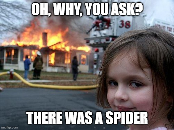 When u see spider |  OH, WHY, YOU ASK? THERE WAS A SPIDER | image tagged in memes,disaster girl | made w/ Imgflip meme maker