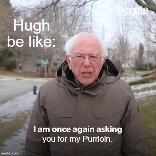 Hugh in Pokémon B2 / W2 |  Hugh be like:; you for my Purrloin. | image tagged in memes,bernie i am once again asking for your support,pokemon | made w/ Imgflip meme maker