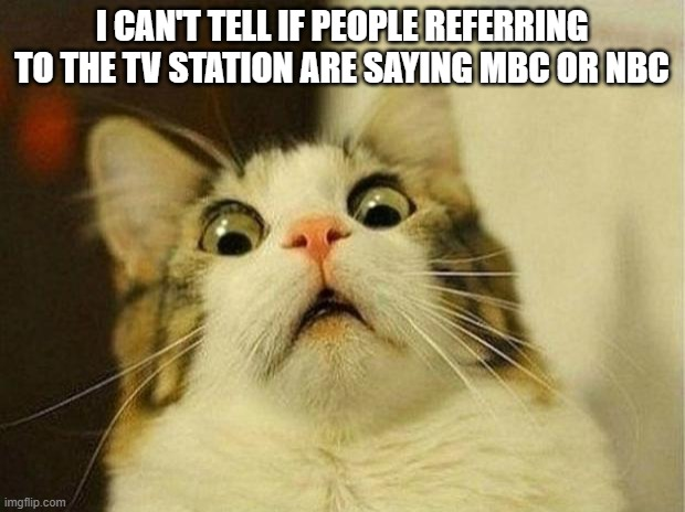 Scared Cat Meme |  I CAN'T TELL IF PEOPLE REFERRING TO THE TV STATION ARE SAYING MBC OR NBC | image tagged in memes,scared cat | made w/ Imgflip meme maker