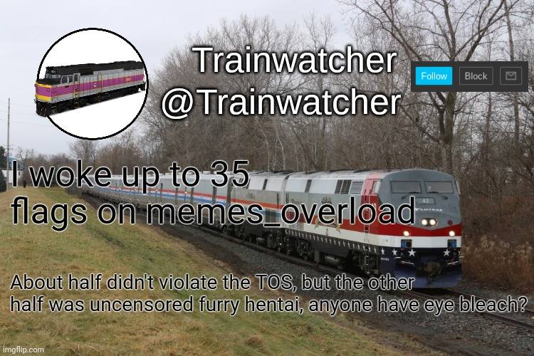 Trainwatcher Announcement 3 |  I woke up to 35 flags on memes_overload; About half didn't violate the TOS, but the other half was uncensored furry hentai, anyone have eye bleach? | image tagged in trainwatcher announcement 3 | made w/ Imgflip meme maker