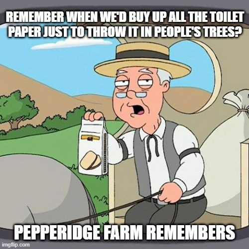 Ah Mischief Memories |  REMEMBER WHEN WE'D BUY UP ALL THE TOILET PAPER JUST TO THROW IT IN PEOPLE'S TREES? PEPPERIDGE FARM REMEMBERS | image tagged in memes,pepperidge farm remembers | made w/ Imgflip meme maker