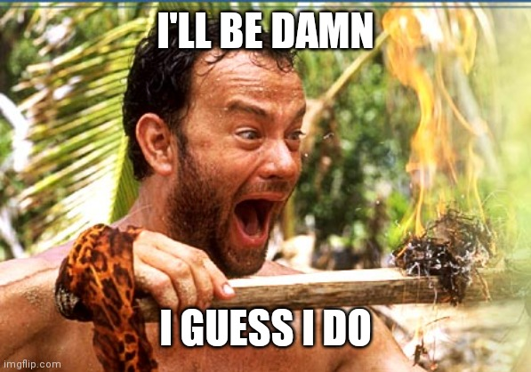 Castaway Fire Meme | I'LL BE DAMN I GUESS I DO | image tagged in memes,castaway fire | made w/ Imgflip meme maker