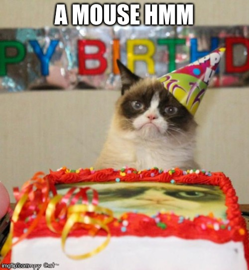Grumpy Cat Birthday |  A MOUSE HMM | image tagged in memes,grumpy cat birthday,grumpy cat | made w/ Imgflip meme maker