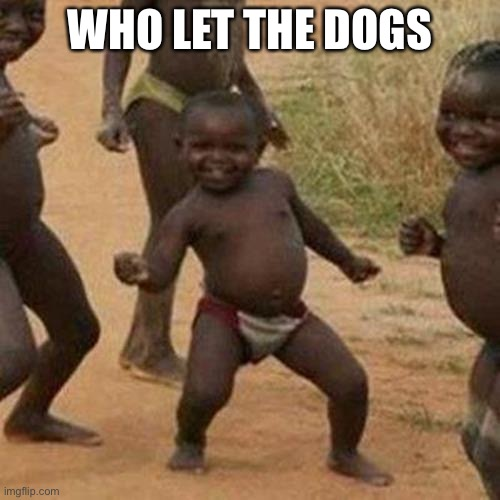 Third World Success Kid |  WHO LET THE DOGS | image tagged in memes,third world success kid | made w/ Imgflip meme maker