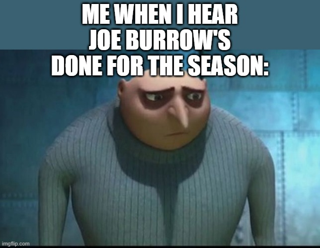 one of the most impressive rookies |  ME WHEN I HEAR JOE BURROW'S DONE FOR THE SEASON: | image tagged in sad gru,memes,joe burrow,nfl,football,injury | made w/ Imgflip meme maker