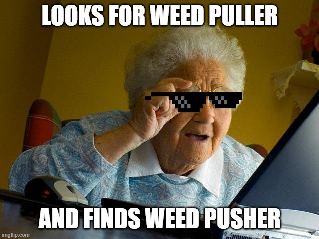Grandma Finds The Internet |  LOOKS FOR WEED PULLER; AND FINDS WEED PUSHER | image tagged in memes,grandma finds the internet | made w/ Imgflip meme maker