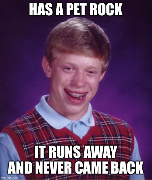 Bad Luck Brian |  HAS A PET ROCK; IT RUNS AWAY AND NEVER CAME BACK | image tagged in memes,bad luck brian,funny,pet rock,lol | made w/ Imgflip meme maker