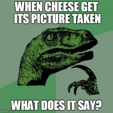 Philosoraptor | WHEN CHEESE GET ITS PICTURE TAKEN WHAT DOES IT SAY? | image tagged in memes,philosoraptor | made w/ Imgflip meme maker