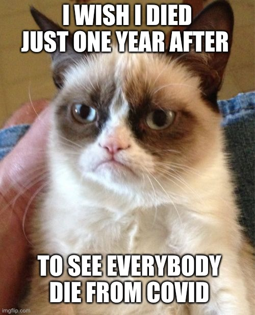 Grumpy Cat |  I WISH I DIED JUST ONE YEAR AFTER; TO SEE EVERYBODY DIE FROM COVID | image tagged in memes,grumpy cat | made w/ Imgflip meme maker
