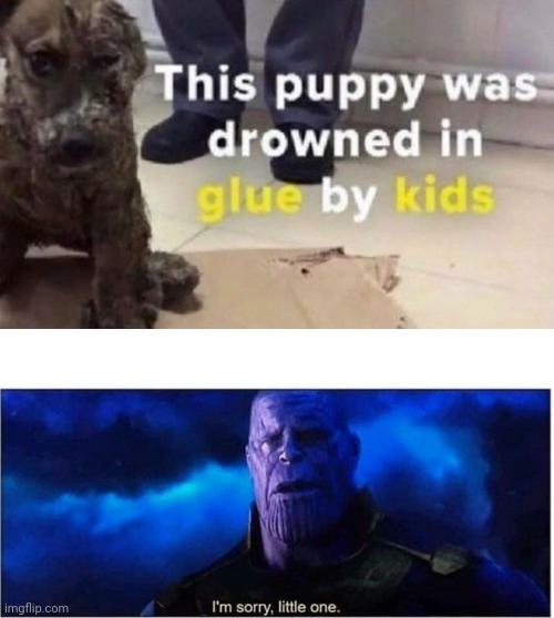 COMMENT HOW YOU FEEL | image tagged in thanos i'm sorry little one,im sorry little one,dog | made w/ Imgflip meme maker