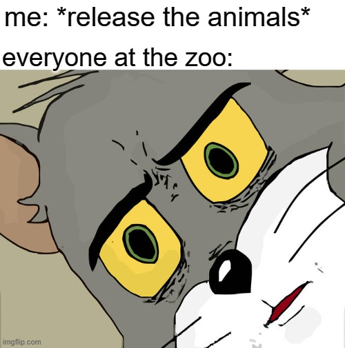 Unsettled Tom |  me: *release the animals*; everyone at the zoo: | image tagged in memes,unsettled tom,gotanypain | made w/ Imgflip meme maker