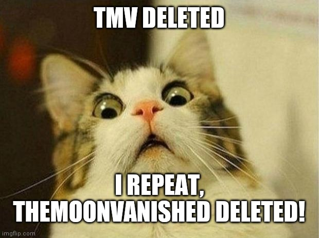 Scared Cat |  TMV DELETED; I REPEAT, THEMOONVANISHED DELETED! | image tagged in scared cat | made w/ Imgflip meme maker